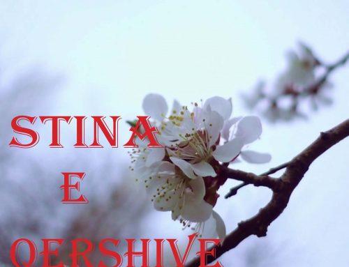 STINA E QERSHIVE